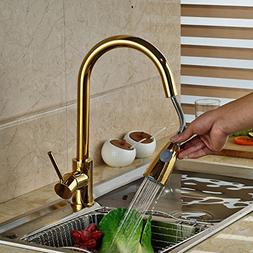 Rozin® Gold Polished Pull Out Sprayer Kitchen Faucet Swivel