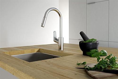 Hansgrohe 04506001 Prep Kitchen with Pull-Down, 2-Spray,