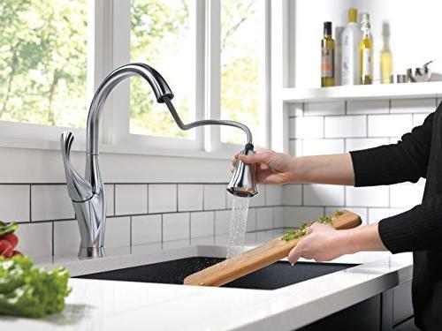 Delta Single-Handle Kitchen Sink Pull Technology Spray 9192-AR-DST