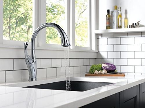Delta Faucet Kitchen Pull Sprayer, ShieldSpray Technology Spray 9192-AR-DST