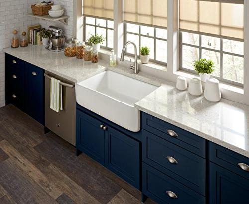 Pfister Stainless 1-Handle Kitchen