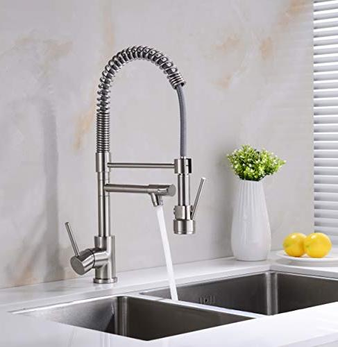 Avola Kitchen Faucets with Down Sprayer, Brushed