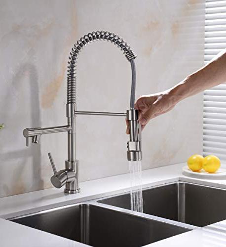 Avola Kitchen Handle Kitchen Faucets Sprayer,