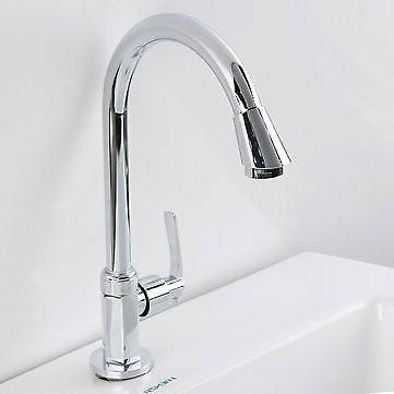 Stainless Single 360° Spout Home