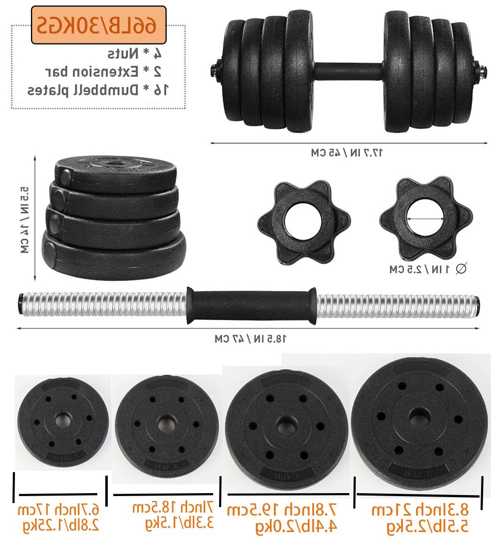 Dumbbell Gym Workout